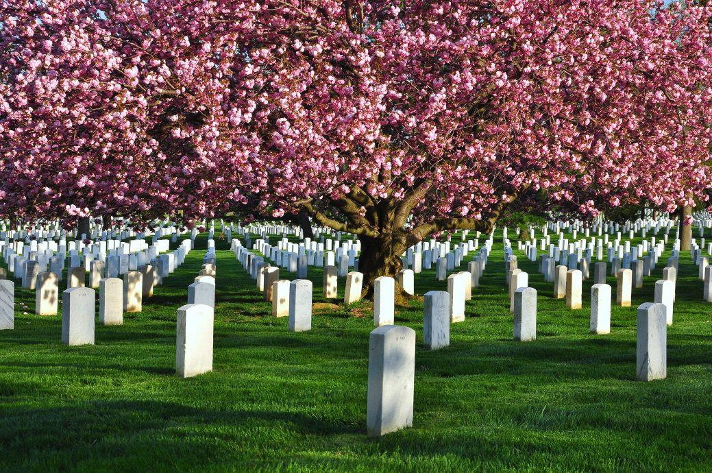 Arlington,National,Cemetery,,Washington,Dc,,Usa