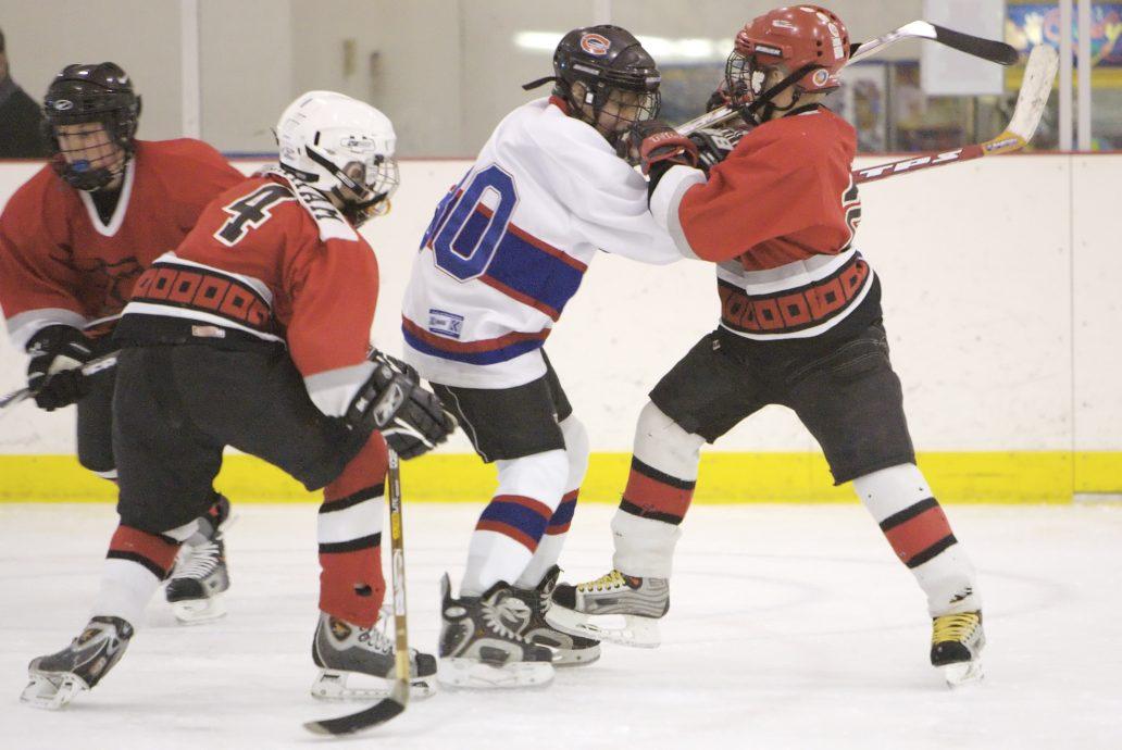 hockey fight