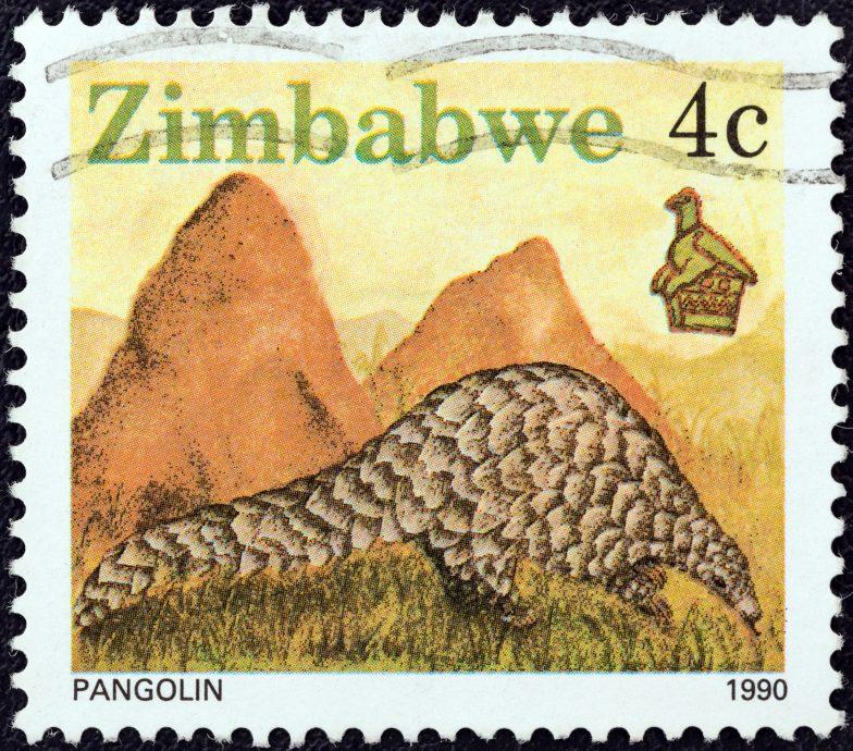 Pangolin (Zimbabwe 1990)