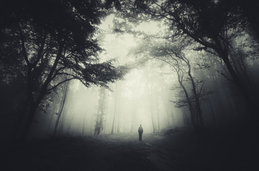 spooky forest scene with man silhouette and dark fog