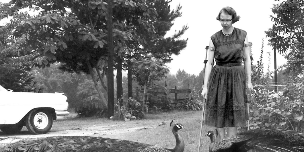 Flannery OConnor Peacocks