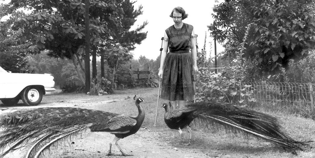 Flannery OConnor Peacocks